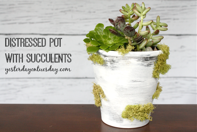 DIY Distressed Pot with Succulents