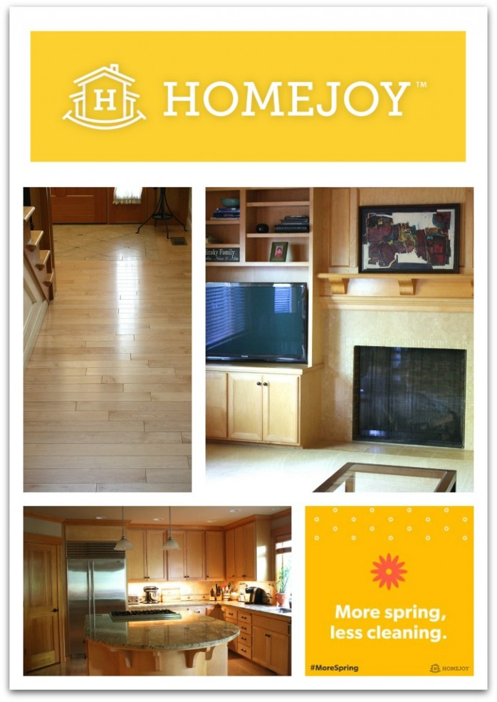 Professional Home Cleaning with Homejoy