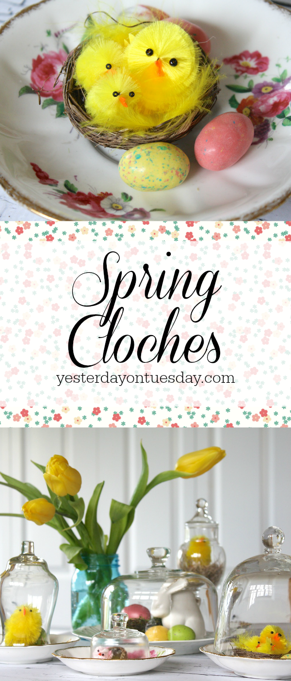 Spring Cloches