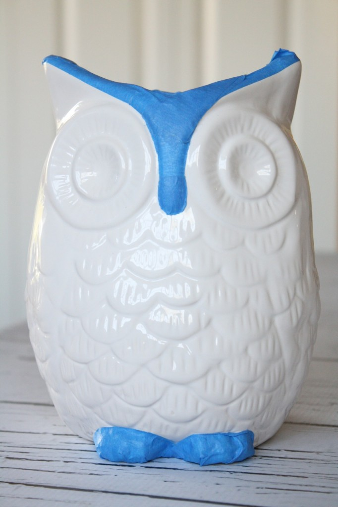 Taped Owl