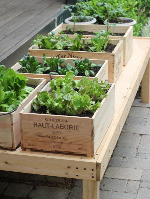 wine-box-planters