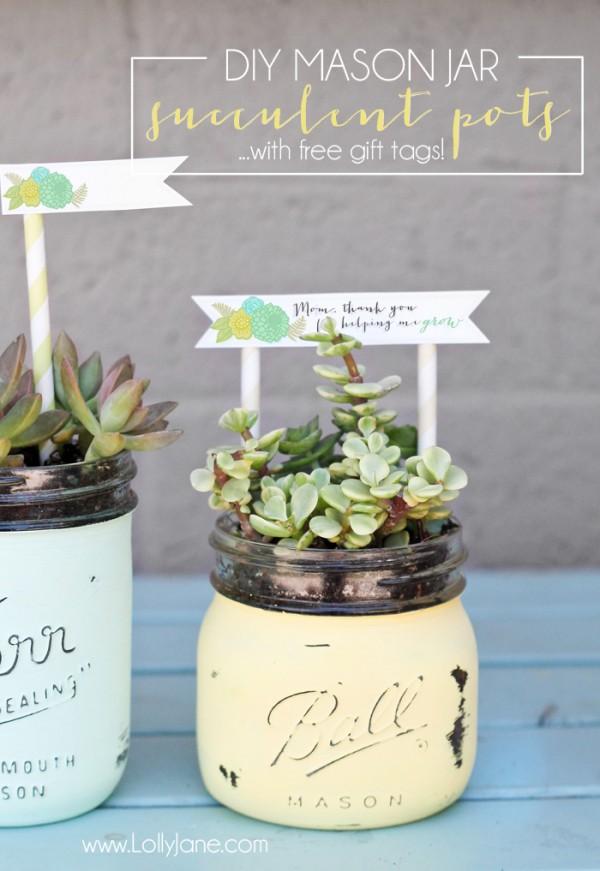 Mason Jar Succulents with Tags