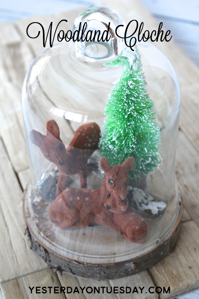 DIY Woodland Cloche, great for Christmas Decorating