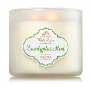 Eucalyptus Mint Candle from Bath and Bodt Works, one of my January must-haves!