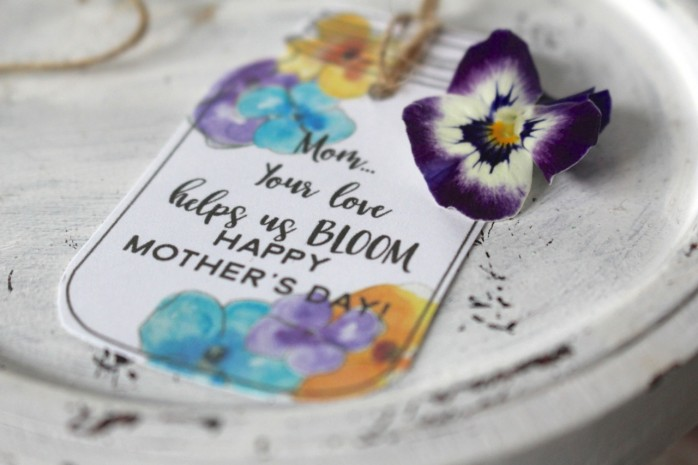 Mother's Day Mason Jar Tag and Gift, a beautiful gift idea for mom