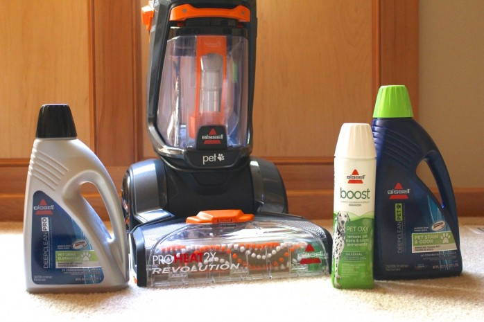 5 Ways to Make Spring Cleaning Fun and how to get rid of those pet stains in your carpet