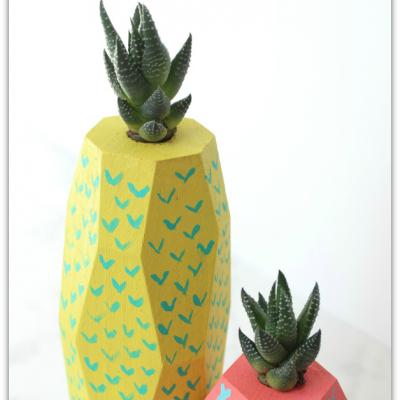 Tropical Fruit Succulent Planters