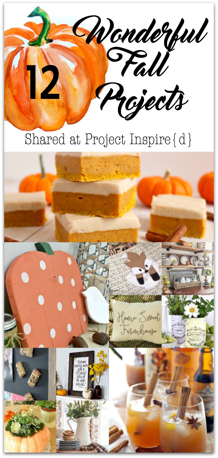 12 Wonderful Fall Projects including a wood pumpkin, pumpkin bars, a cute fox book bag and more.