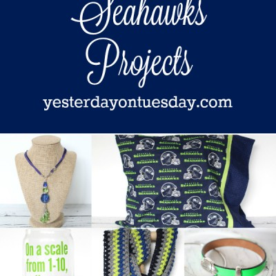 7 Fantastic Seahawks Projects