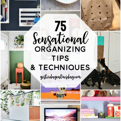 75 Sensational Organizing Tips and Techniques