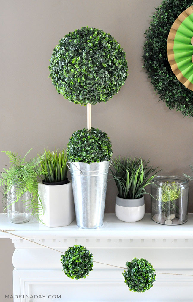 DIY Boxwood Topiary from Made in a Day