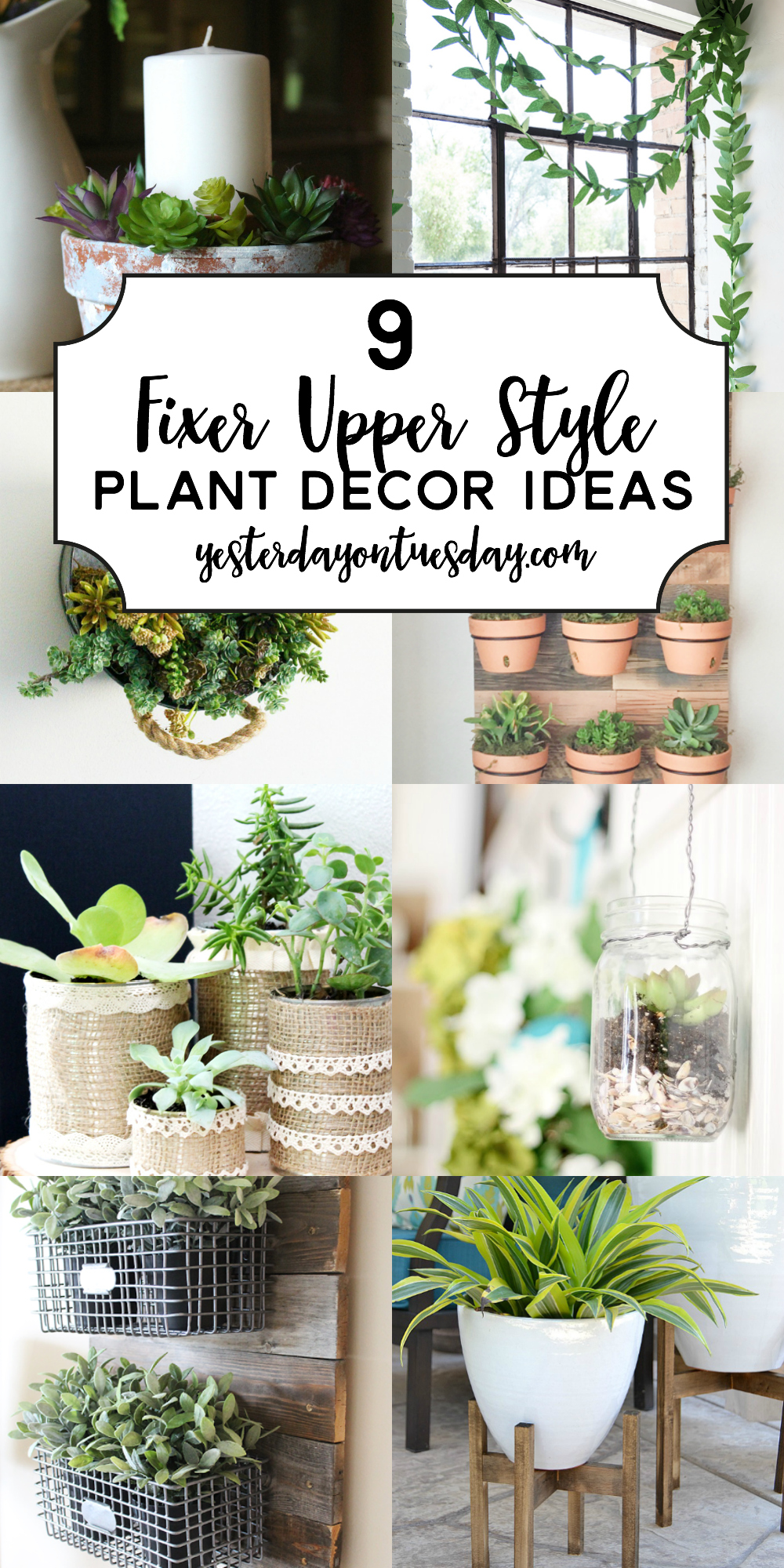 Modern Farmhouse Plant Decor Ideas