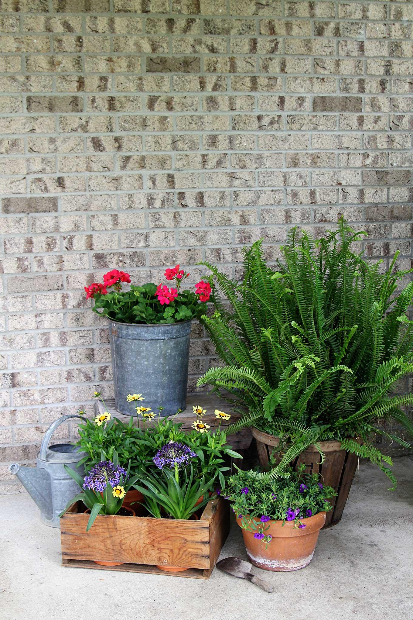 Creative Garden Containers