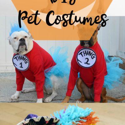 12 DIY Pet Costumes