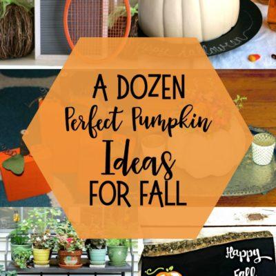 Perfect Pumpkin Ideas for Fall